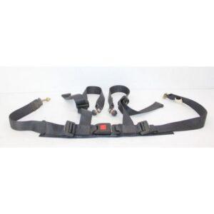 Photo of Seat Belt